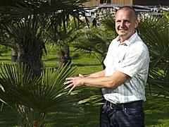 Bodensee-Palmen Marcus Schwark